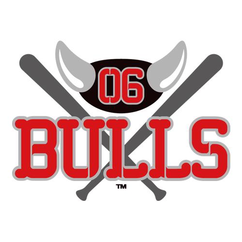 野球球団06BULLSとスポンサー契約を結びました