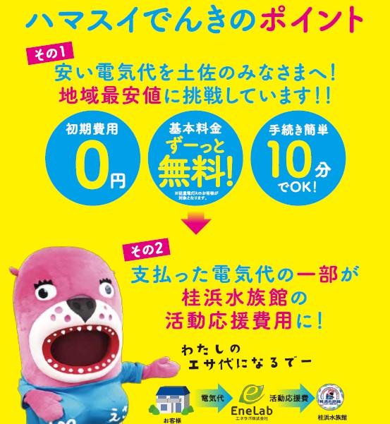 【四国エリア】 ハマスイでんき 受付中!